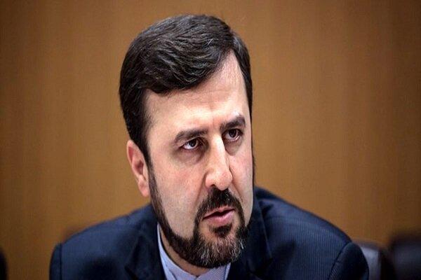 ایران شفاف ترین  برنامه صلحآمیز هستهای در کشورهای عضو آژانس