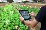 سوق یافتن سرمایههای میلیاردی یزد به سمت کشاورزی نوین