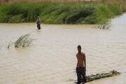 کمک ۱۰ میلیون یورویی اروپا برای تالاب هامون
