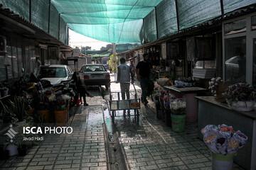 درآمد ۴۰۰ هزار تومانی کودکان کار در شیراز!