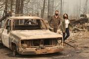 ممنوع فروش خودروی بنزینی از سال ۲۰۳۵ در کالیفرنیا