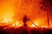 آتش سوزی جنگلی در کالیفرنیا