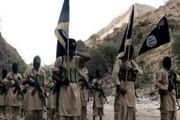 خنثیسازی ۴۱ عملیات انتحاری در یمن