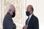 دو دلیل سفر وزیر خارجه عراق به تهران