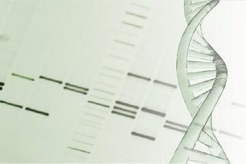 نتایج امیدوار کننده فاز ۱ داروی جدید ضد سرطان