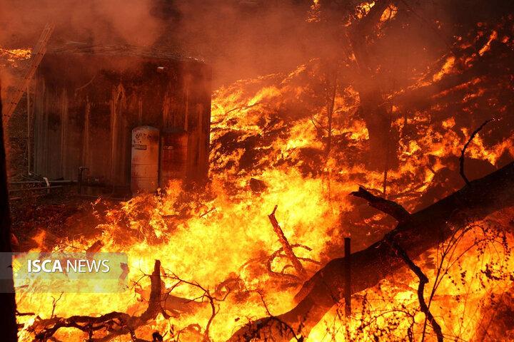 ورود هلال احمر به آتشسوزی جنگل در توسکستان