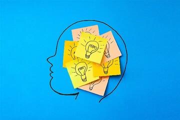 کشف فرآیند پیچیده مغز در حافظه کاری