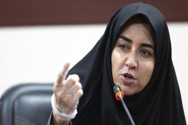 ایران هیچ تعهد جدیدی را در برجام نمیپذیرد/ تمرد دولت از قانون مجلس مجازات در پی دارد