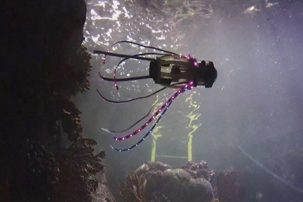 ساخت ربات ماهی مرکب+فیلم