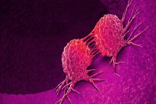 همافزایی صنعت و دانشگاه در توسعه نانوداروی ضدسرطان