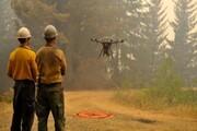مقابله با آتشسوزی به کمک تخم اژدها