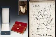 سارقان کتابچههای داروین را ربودند!