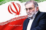 تقدیر از خانواده شهید فخریزاده در مجلس
