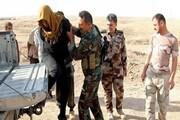 بازداشت ۸ عنصر تکفیری داعش در ۳ استان توسط ارتش عراق