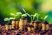 ایجاد بیش از ۲ هزار و ۹۰۰ طرح اشتغالزایی با استفاده از تسهیلات کشاورزی