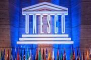 اضافه شدن یک هنر دیگر به میراث جهانی ایران/ تکذیب تور واکسن