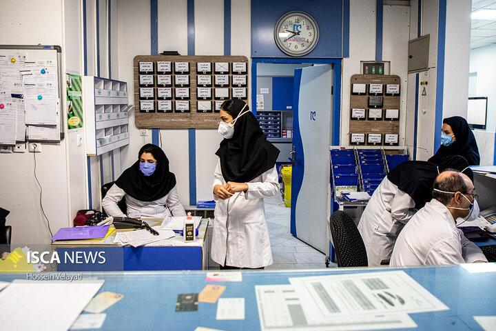 ۵۰ درصد پرسنل بیمارستانهای همدان فارغ التحصیل دانشگاه آزاد هستند
