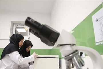 ۱۸۰۰ عضو جدید هیات علمی در دانشگاههای علوم پزشکی جذب میشوند
