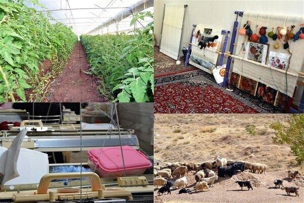 پرداخت ۶ هزار میلیارد وام اشتغال زایی روستایی به طرحهای کشاورزی