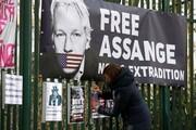 آمریکا علیه حکم عدم استرداد آسانژ فرجام خواهی می کند