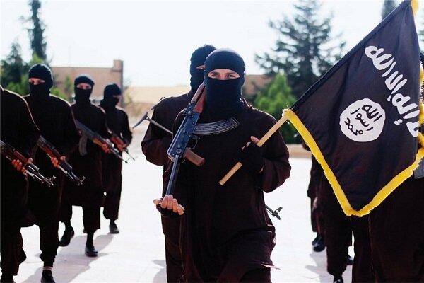 تلاش برای بازگرداندن اعضای اروپایی داعش به کشورهایشان