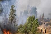 مهار آتش در پارک ملی گلستان/تیم مراقبت ۱۵ نفره در محل مستقر هستند