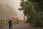 پیشبینی وزش باد شدید در ۶ استان و احتمال شکستن درختان