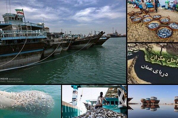 اجرای ۱۳ پروژه در حوزه صنعت دریایی