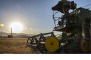 دولت دخالت نکند، قیمت ماشینآلات کشاورزی کاهش مییابد