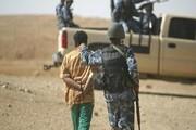 بازداشت «ببر داعش» در غرب بغداد