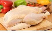 احتمال حذف حواله از فرآیند توزیع مرغ بین خرده فروشان