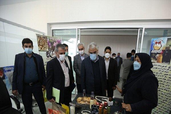 دکتر طهرانچی از بازار فناوری و نوآوری شهید قاسم سلیمانی بازدید کرد
