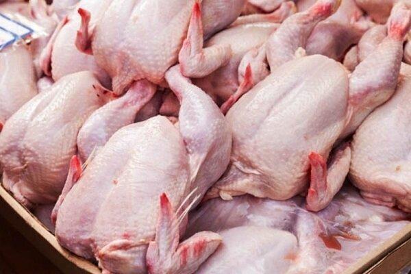 افزایش قیمت مولفههای تولید، بازار مرغ را بیثبات میکند