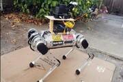 رباتها راهنمای نابینایان میشوند