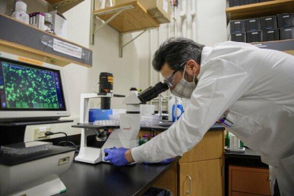 فراخوان کمک هزینه پژوهشی برای دانش پژوهان ارشد و دکتری منتشر شد