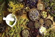 سطح زیر کشت گیاهان دارویی دو برابر می شود