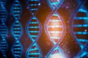 شناسایی ژن ایجادکننده سندروم نوعی اختلال اسکلتی توسط محققان کشور