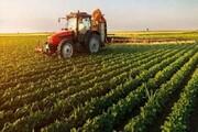 ٨٠ درصد کشاورزی کشور خرده مالکی است