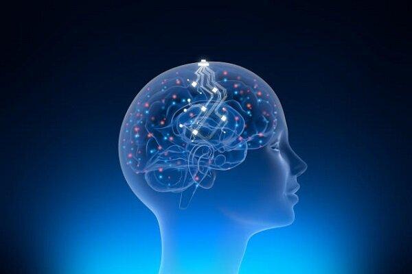بحران مدیریتی در شرکت فناوری عصبی «ایلان ماسک»
