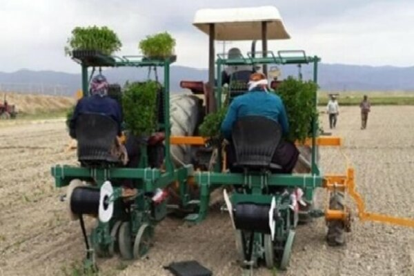 ساخت دستگاه «نشاء کار» ایرانی