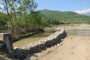 توسعه تولید آبزیان و رشد گیاهان در مناطق شور و بیابانی