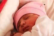 میزان تولد در ۳ سال گذشته ۳۰ درصد کاهش یافته است