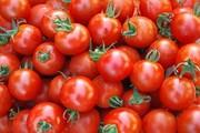 جوانسازی پوست با گوجه فرنگی