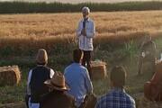 جلیلی: خیال کشاورزان از فروش محصولشان باید راحت باشد