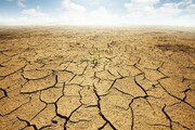 خشکسالی پُربارانترین استان کشور