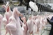 توزیع  ۱۰ تُن مرغ به نرخ کیلویی ۲۵ هزار تومان در تهران