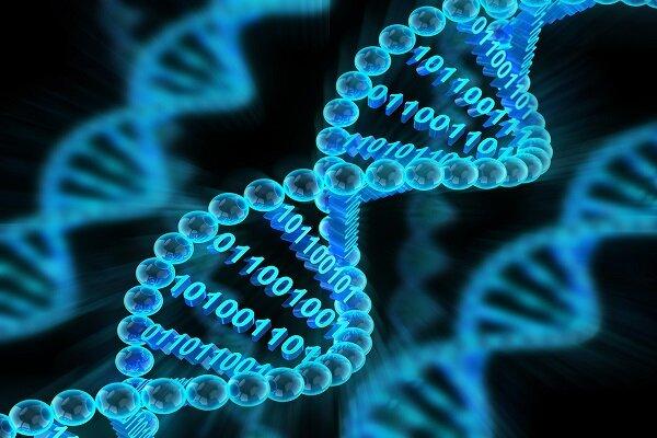آیا میتوان همه عکسهای دنیا را روی DNA ذخیره کرد؟