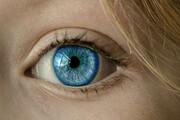 تشخیص به موقع بیماریهای چشمی از طریق یک فناوری لمسی