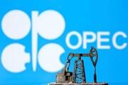 اوپک تولیدکنندگان را به سرمایه گذاری در نفت فراخواند