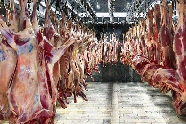 افزایش ۴۳ درصدی عرضه گوشت قرمز در بازار